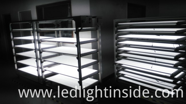 1800lm 18W T8 LED Tube Light